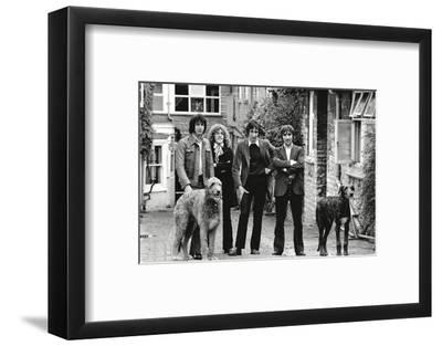 The Who, with Dogs-Associated Newspapers-Framed Photo