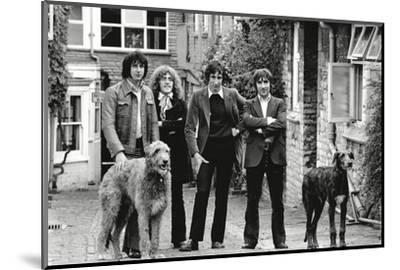 The Who, with Dogs-Associated Newspapers-Mounted Photo