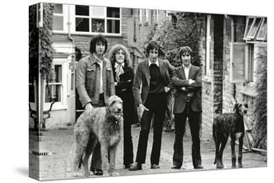The Who, with Dogs-Associated Newspapers-Stretched Canvas Print
