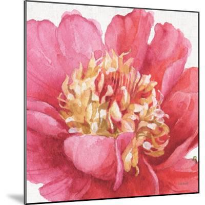 Pink Garden V-Lisa Audit-Mounted Art Print