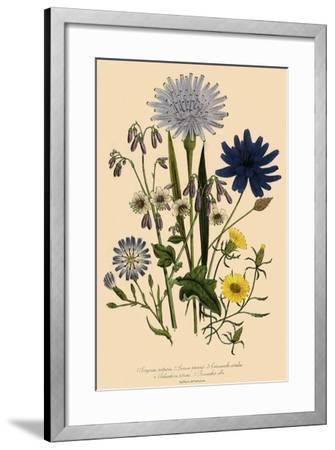 Viper Grass and Others--Framed Giclee Print