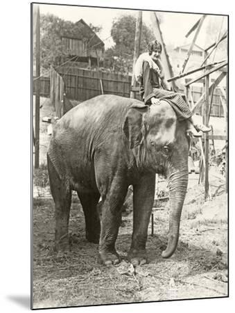 Elephant with Someone on His Mind--Mounted Photo