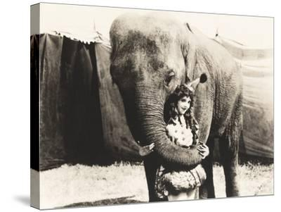 Elephant Embracing Circus Performer--Stretched Canvas Print