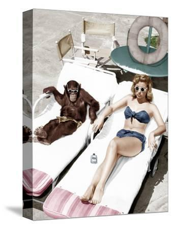 Chimpanzee and a Woman Sunbathing--Stretched Canvas Print