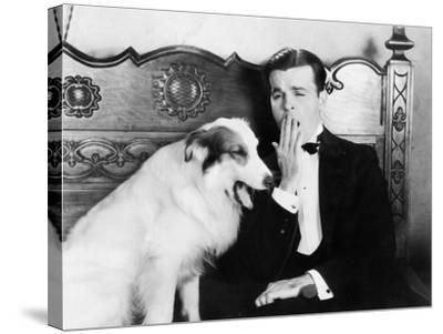 Man and Dog Sitting Together Yawning--Stretched Canvas Print