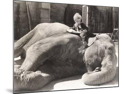 Little Boy Reading a Book on Sleeping Elephant--Mounted Photo