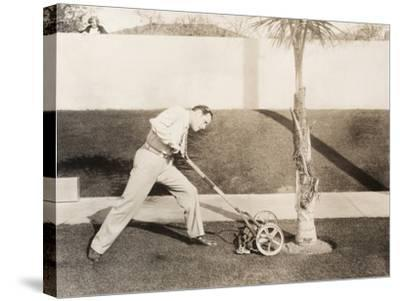 Man Attacking Palm Tree with Lawn Mower--Stretched Canvas Print