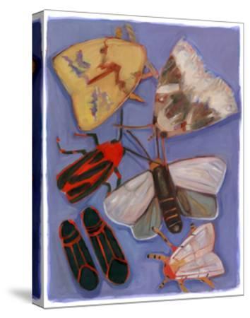 Minnesota Moths and Box Elders-Megan Moore-Stretched Canvas Print