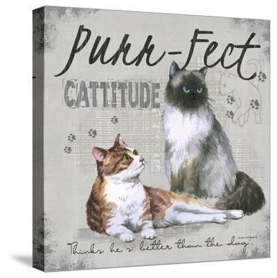 Cattitude-Anita Phillips-Stretched Canvas Print