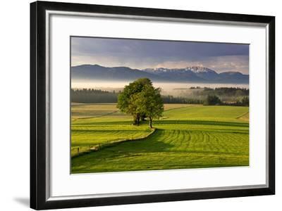 Germany, Bavaria, Faistenberg, View at Zwiesel, Benediktenwand, Bavarian Alpine Foothills-Bernd Rommelt-Framed Photographic Print