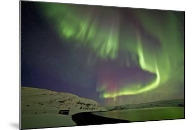 Norway, Northern Lights, Aurora Borealis-Bernd Rommelt-Mounted Photographic Print