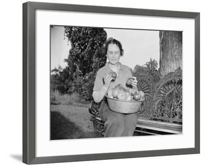 Director of the Mint Nellie Tayloe Ross relaxes on her Maryland farm, 1938-Harris & Ewing-Framed Photographic Print