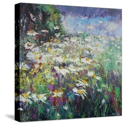 Daisy Meadow-Sylvia Paul-Stretched Canvas Print