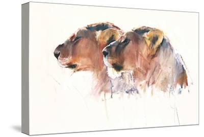Sisters, Etosha, 2017,-Mark Adlington-Stretched Canvas Print
