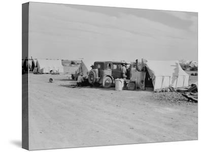 Squatter camp on county road California, 1937-Dorothea Lange-Stretched Canvas Print