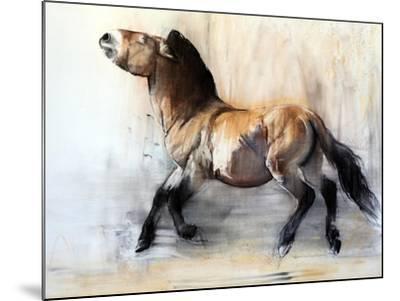 Ancient Horse (Przewalski in winter), 2014-Mark Adlington-Mounted Giclee Print
