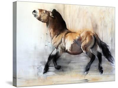 Ancient Horse (Przewalski in winter), 2014-Mark Adlington-Stretched Canvas Print