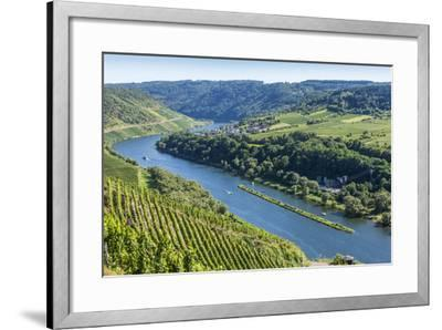 Europe, Germany, Rhineland-Palatinate, District Cochem-Zell-Udo Bernhart-Framed Photographic Print