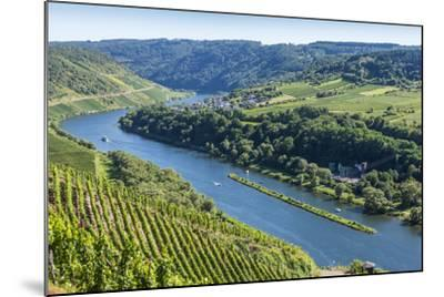 Europe, Germany, Rhineland-Palatinate, District Cochem-Zell-Udo Bernhart-Mounted Photographic Print