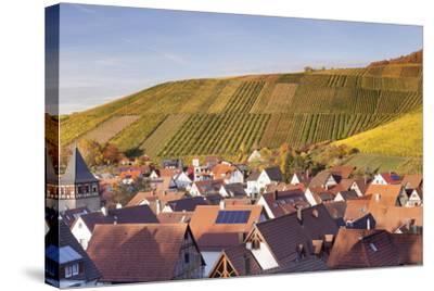 Strumpfelbach with Vineyards in Autumn, Baden Wurttemberg, Germany-Markus Lange-Stretched Canvas Print
