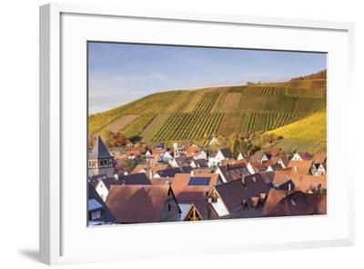 Strumpfelbach with Vineyards in Autumn, Baden Wurttemberg, Germany-Markus Lange-Framed Photographic Print