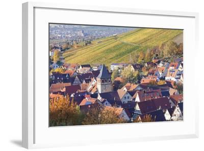 Strumpfelbach with Vineyards in Autumn, Baden Wurttemberg, Germany-Markus Lange-Framed Photographic Print