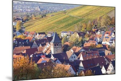 Strumpfelbach with Vineyards in Autumn, Baden Wurttemberg, Germany-Markus Lange-Mounted Photographic Print