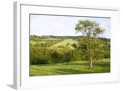 Scenery Vogelsberg, Hessen, Germany-Ernst Wrba-Framed Photographic Print