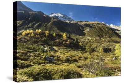 Autumnal Mountain World in the Silvretta-Jurgen Ulmer-Stretched Canvas Print