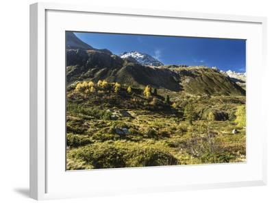 Autumnal Mountain World in the Silvretta-Jurgen Ulmer-Framed Photographic Print