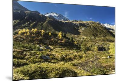 Autumnal Mountain World in the Silvretta-Jurgen Ulmer-Mounted Photographic Print