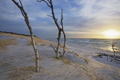Sunset on the Western Beach of Darss Peninsula-Uwe Steffens-Framed Photographic Print