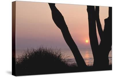 Sunset in Front of the Western Beach of Darss-Uwe Steffens-Stretched Canvas Print