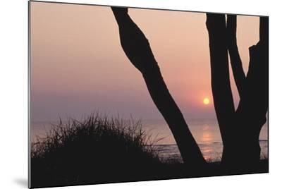 Sunset in Front of the Western Beach of Darss-Uwe Steffens-Mounted Photographic Print