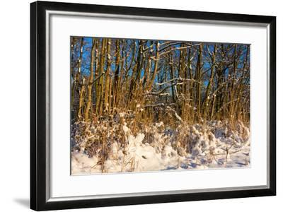 Baltic Sea, Winter-Catharina Lux-Framed Photographic Print