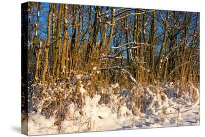 Baltic Sea, Winter-Catharina Lux-Stretched Canvas Print