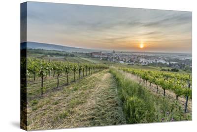 Sunrise, Clouds, Town, Vineyard, the Horizon-Jurgen Ulmer-Stretched Canvas Print