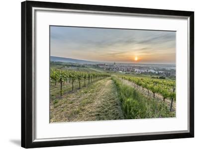 Sunrise, Clouds, Town, Vineyard, the Horizon-Jurgen Ulmer-Framed Photographic Print