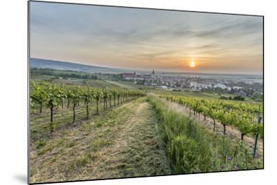 Sunrise, Clouds, Town, Vineyard, the Horizon-Jurgen Ulmer-Mounted Photographic Print