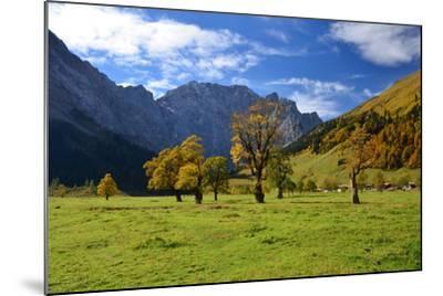 Austria, Tyrol, Autumn-Peter Lehner-Mounted Photographic Print