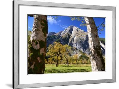 Austria, Tyrol, Autumn-Peter Lehner-Framed Photographic Print