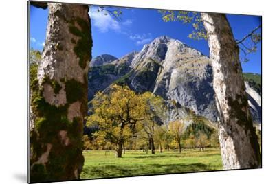Austria, Tyrol, Autumn-Peter Lehner-Mounted Photographic Print