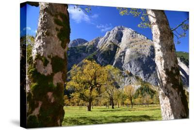 Austria, Tyrol, Autumn-Peter Lehner-Stretched Canvas Print