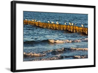 Baltic Sea-Catharina Lux-Framed Photographic Print