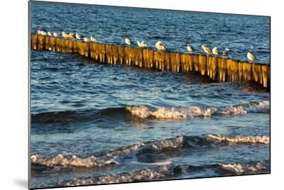 Baltic Sea-Catharina Lux-Mounted Photographic Print