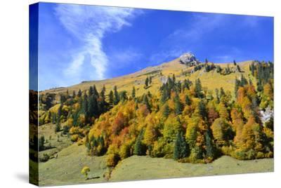 Austria, Tyrol, Autumn-Peter Lehner-Stretched Canvas Print