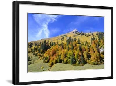 Austria, Tyrol, Autumn-Peter Lehner-Framed Photographic Print