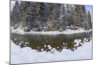The Ammer in Winter with Ice and Snow-Wolfgang Filser-Mounted Photographic Print