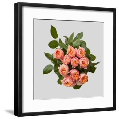 Pink Bouquet of Roses-artjazz-Framed Photographic Print