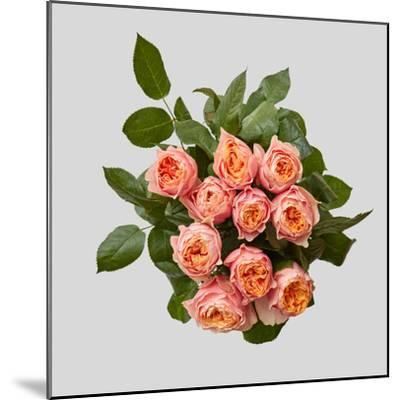 Pink Bouquet of Roses-artjazz-Mounted Photographic Print